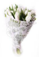Букет из белых тюльпанов в крафте