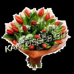 Букет из 29 красных тюльпанов в упаковке