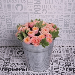 Пионовидные розы в ведре
