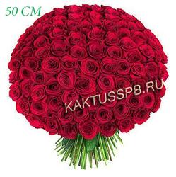 101 красная роза Россия (50 см)