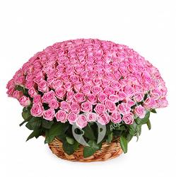Большая корзина розовых роз