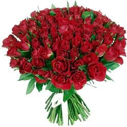 101 роза дешево в СПб