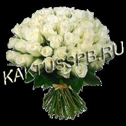 51 кенийская белая роза