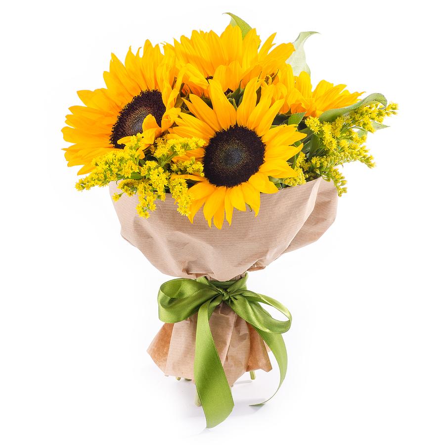 Хрюшек, заказ цветов с доставкой в москве подсолнухи