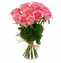 Розовая одноголовая роза.