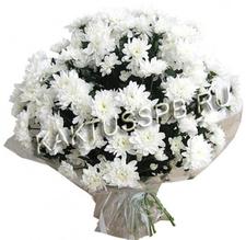 Букет белой хризантемы
