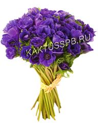 Букет фиолетовых анемонов