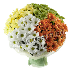 Букет разноцветных хризантем фото