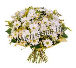 Букет хризантемы и ромашек фото