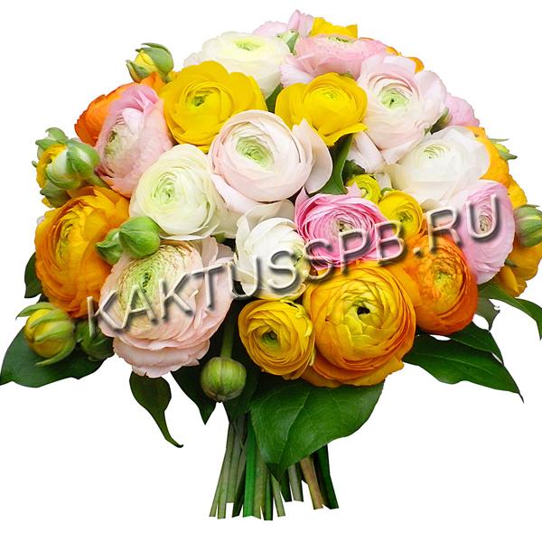 Купить букет ранункулюсов, купить букет из 25 розы киеве