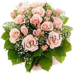 Розовые розы в снежном плену
