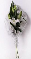 Букет из 1 лилии