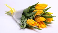 7 желтых тюльпанов