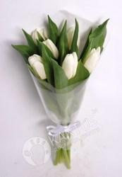 7 белых тюльпанов