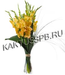 Монобукет желтых гладиолусов