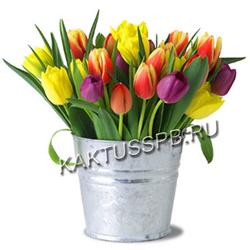 Ведро тюльпанов