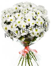 Букет хризантем №2