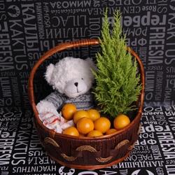 Фруктовый набор №2 с мандаринами, рафаэлло, плюшевым медведем и ёлкой