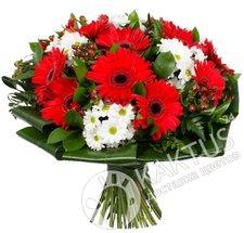 Красные герберы и белая хризантема.