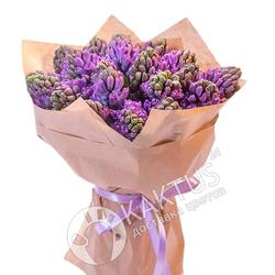 Фиолетовые гиацинты в крафт-бумаге.