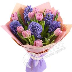 Синие гиацинты и розовые тюльпаны.