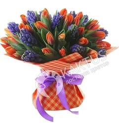 Красные тюльпаны и синие гиацинты.