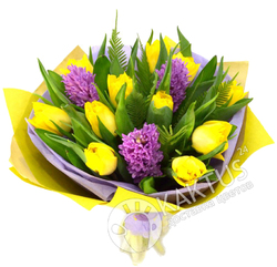 Сиреневые гиацинты и жёлтые тюльпаны.