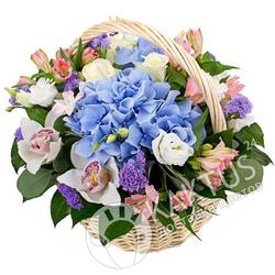 Корзина гортензии и орхидей с доставкой.