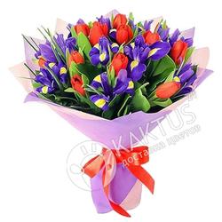 Красные тюльпаны и синие ирисы.