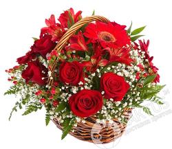 Красные розы в корзине.