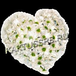 Сердце из хризантем №1