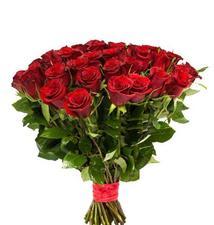 51 красная роза.