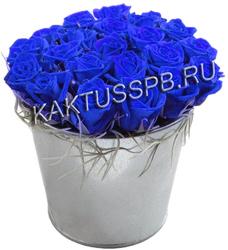 Ведро синих роз